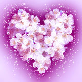 Apple flowers  in heart shape Stock Photo