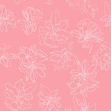 Apple flowers white pattern Stock Image