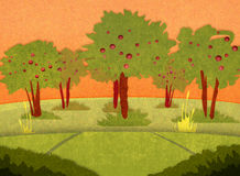 Apple font du jardinage au coucher du soleil Photo libre de droits