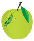 Apple food grasshopper Stock Photography