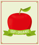 Apple food 100 organic nutrition. Illustration eps 10 Stock Photos