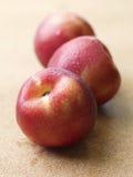 Apple frais humide Images libres de droits