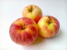 Apple frame Royalty Free Stock Images