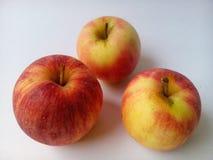 Apple frame Royalty Free Stock Photo