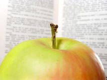 Apple in front of an open book Stock Images