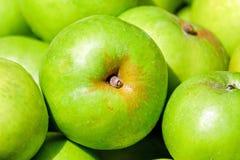 Apple, Fruit, Fruits, Green Stock Photos