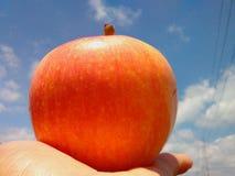 Apple natural blue sky. Fruit for health Stock Image