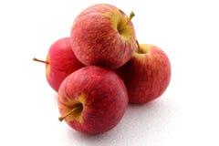 Apple fruit isolated on white background. Stock Images