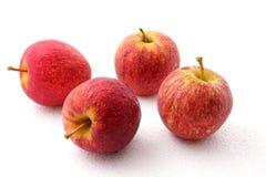 Apple fruit isolated on white background. Royalty Free Stock Photography