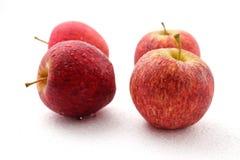 Apple fruit isolated on white background. Royalty Free Stock Photo