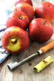Apple fruit for jam making elaboration Royalty Free Stock Photo