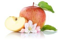 Apple fruit slice isolated on white Royalty Free Stock Photography