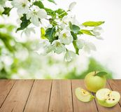 Apple fruits on brown wooden background. With copy space and flowers Stock Images