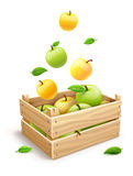 Apple fruits falling into the wooden box Royalty Free Stock Images