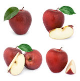 Apple fruits with leaf. Red apple fruits collection with leaf isolated on white background Stock Image