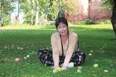 Apple fruktträdgård i nedgången Royaltyfri Foto