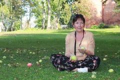 Apple fruktträdgård i nedgången Arkivfoto