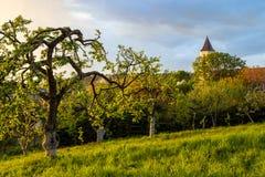 Apple fruktträdgård och kyrka arkivbilder