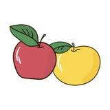 Apple fruttifica Fotografie Stock