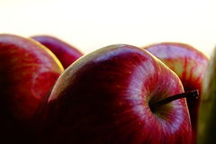 Apple fruttifica Fotografia Stock Libera da Diritti