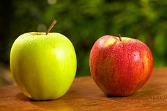 Apple garden. Couple of a red and a green apple on wooden table Royalty Free Stock Image