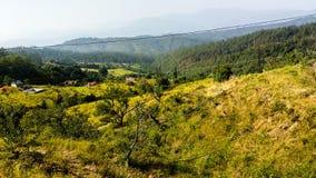 Apple Garden in Ranikhet Uttarakhand stock photo