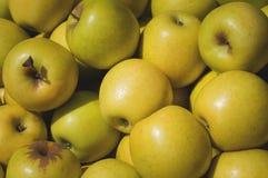 Apple giallo da vendere sul mercato Fondo di agricoltura Primo piano Vista superiore Immagini Stock Libere da Diritti