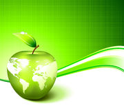 Apple Globe with World Map. On Abstract Green Background Stock Images