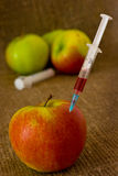 Apple GMO. Fruit GMO. Apple pricked syringe with chemical preparation on a dark background royalty free stock photos