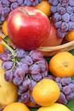 Apple, grape and tangerine Stock Photos
