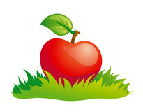 Apple in grass. Red apple in green grass. EPS8 Stock Photos
