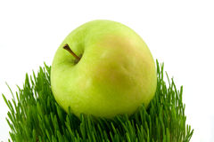 Apple and grass. Green apple on grass isolated Stock Images