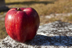 Apple on a gravestone. Image of an apple left resting atop a granite gravestone in a Central Florida cemetery Royalty Free Stock Photography