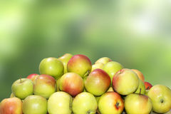 Apple. And  on green background Stock Images