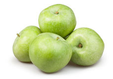 Apple green group stock photography