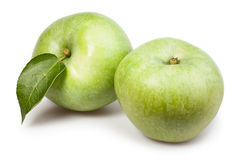 Apple green two leaf Royalty Free Stock Photos