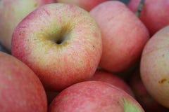 Apple hög Arkivfoton