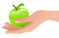 Apple in the hand. Vector illustration, AI file included Stock Photo