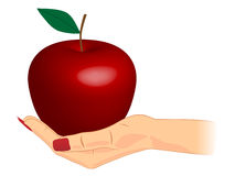 An apple on the hand Stock Images