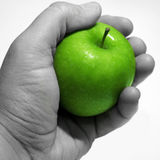 Apple in the Hand. A Green apple being held by a hand Stock Photography