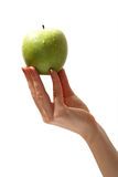 Apple in hand. Tasty sweet apple in graceful woman's hand Royalty Free Stock Photo