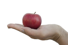Apple in hand. Red apple lying on the palm Stock Images