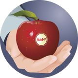 An apple in the hand Stock Images
