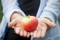 Apple on hand. Beautiful apple on a hand Royalty Free Stock Image