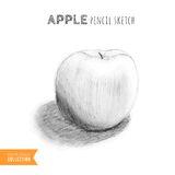 Apple hand drawn sketch Royalty Free Stock Images