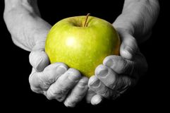 Apple in a hand old woman on the black Stock Photography