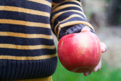 Apple on hand. Red apple on a hand Royalty Free Stock Images