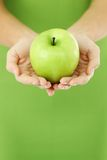 Apple in hands Royalty Free Stock Image