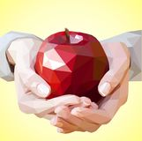 Apple in the hands of a woman. Red apple in the hands of a woman Royalty Free Stock Images