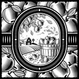 Apple harvest black and white. Retro apple harvest in woodcut style. Black and white  illustration with clipping mask Royalty Free Stock Image